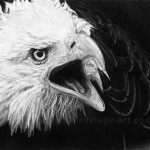 Cry of the eagle